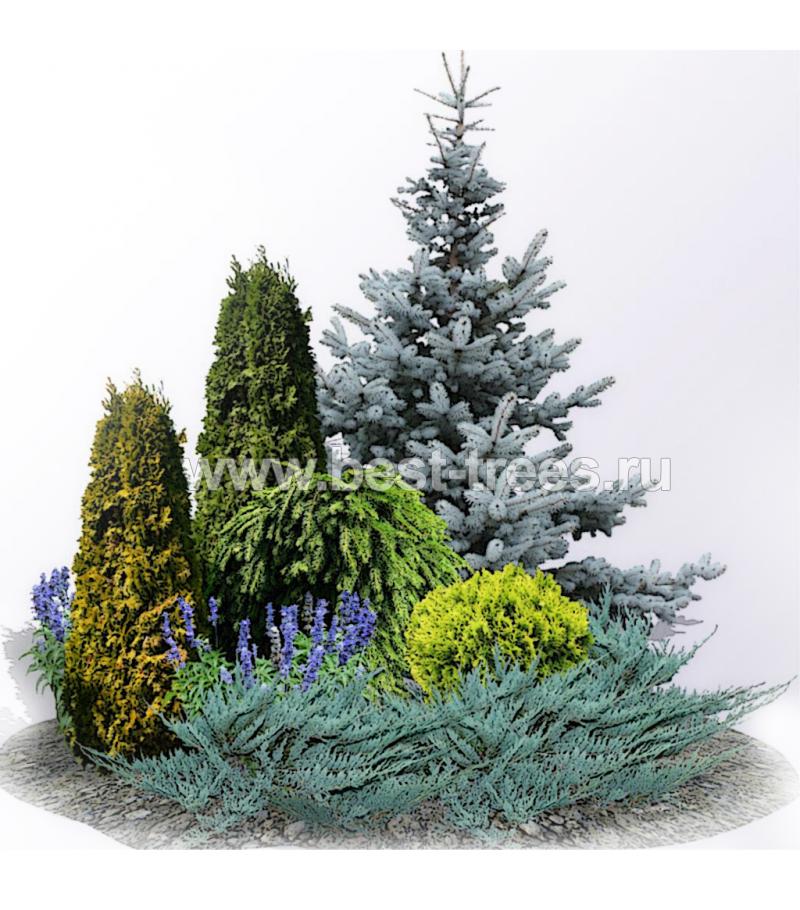 Стих группы растений