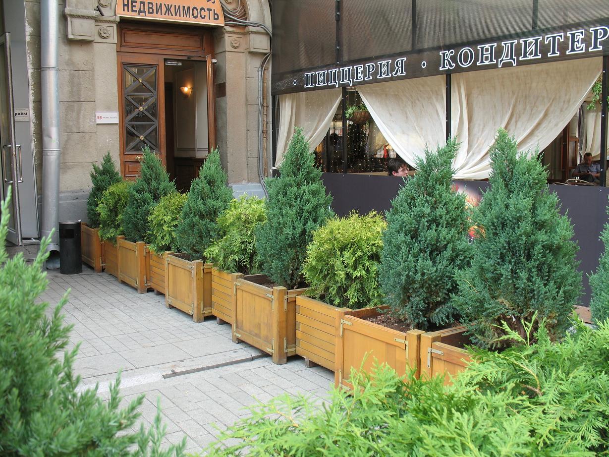 озеленение открытых террас от